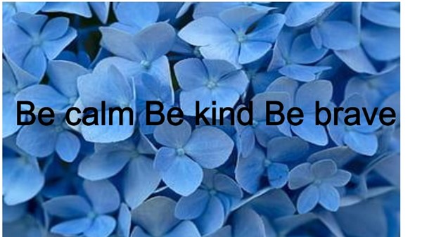 Be calm Be kind Be brave poster